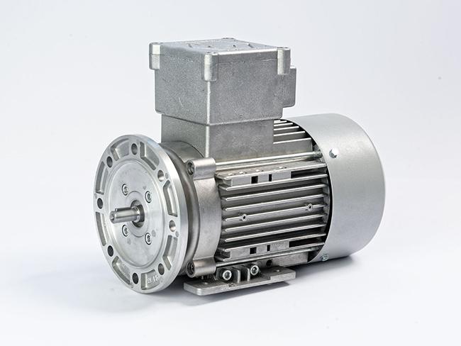 الکتروموتور ضد انفجار پایه فلنچ فریم 63